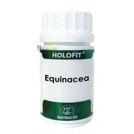 Holofit Equinacea